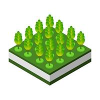 Isometric trees on a white background vector