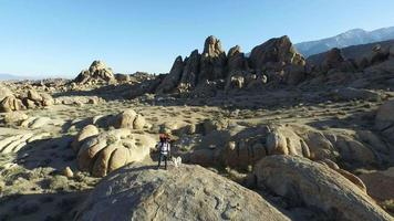 Man backpacker standing on a boulder with his dog video