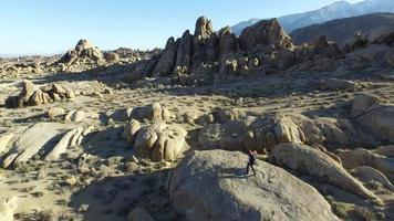 Jeune homme backpacker debout sur un rocher avec son chien video