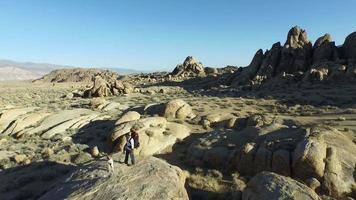 Backpacker debout sur un rocher avec son chien video
