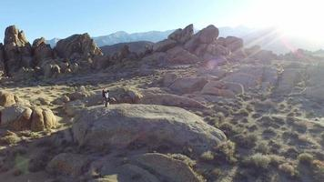 Young man standing on a boulder with his dog video