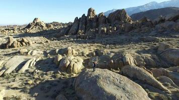 Aerial shot of a young man standing on a boulder with his dog video