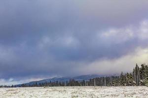 nubes oscuras sobre abetos paisaje montaña brocken harz alemania foto
