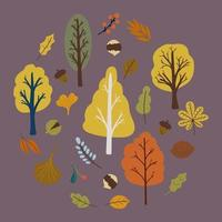 Autumn trees set with leaves and nuts vector. Vector illustration