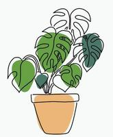Simplicity monstera plant freehand continuous line drawing vector
