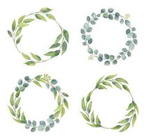 Eucalyptus branches wreaths with watercolor style.  Wedding greenery vector