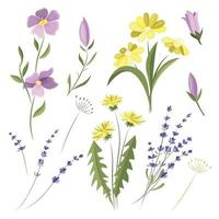 vector conjunto de flores silvestres. elementos de diseño. flores del prado.