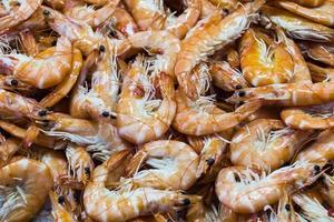 Camarones y langosta en un mercado de pescado español foto