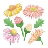 Set of watercolor painted winter flower clipart. Hand drawn vector