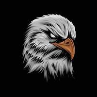 Angry Bald Eagle Vector Artwork