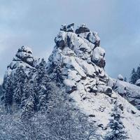 rocas y árboles cubiertos de nieve. los árboles están congelados. para el fondo foto