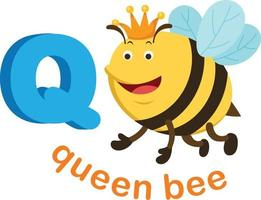 Illustration Isolated Alphabet Letter Q Queen bee vector