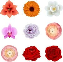 set of isolated flowers vector