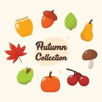 Autumn and Fall Season Icons Collection vector