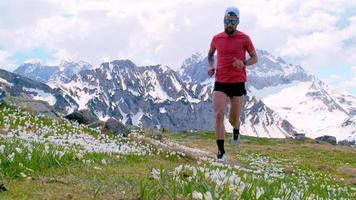 corredor de montaña en flores de flores en primavera video