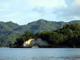 The nature of the Lembeh Strait. photo