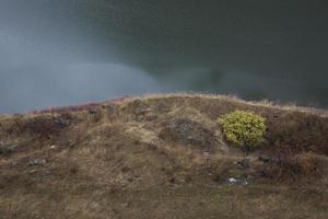árbol sin hojas cerca del lago en el cielo de fondo del atardecer foto