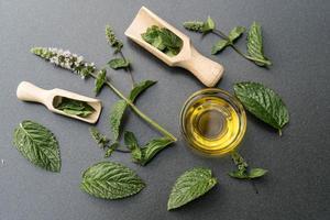 hojas de menta verde foto