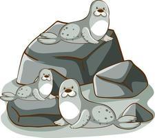 Many seals on the rocks vector