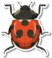 A sticker template with a ladybug isolated vector