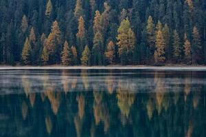 Autumn forest is reflected in the lake photo
