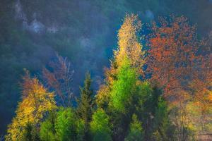 autumn colors on Swiss alps photo