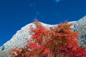 primera nevada en las montañas en otoño foto