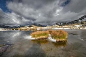 Mechones de pradera en un pequeño lago alpino foto