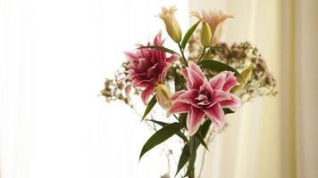 Imagen de primer plano de un lirio rosa fresco que florece en verano foto