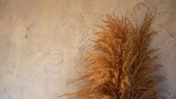 Dry branches of reeds indoors. Scandinavian style room decor photo