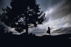 silueta de una mujer en un vestido de pie debajo de un árbol en un cielo foto