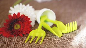 fondo de jardinería. herramientas de jardinería y flores. foto