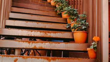 Primer plano de barandilla y escalones con flores. foto
