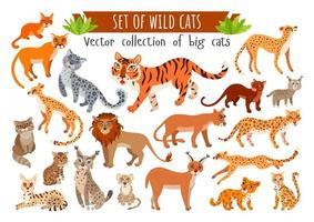 Set of wild cats. Vector cartoon exotic animals