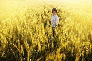 Boy in a white shirt among the wheat field photo