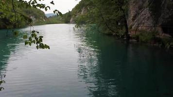Plitvice Lakes National Park Croatia fish under clear turquoise water. video