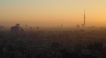 Aerial view of Tokyo City photo