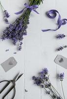 Lavender flowers, scissors and ribbon photo