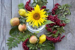 composición natural de otoño. foto