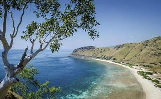 Vista de la costa y la playa cerca de dili en Timor Oriental leste desde cristo rei hill monumento foto