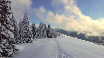 Snowy alpine landscape with ski trail video