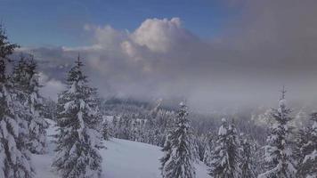 paesaggio invernale in montagna video
