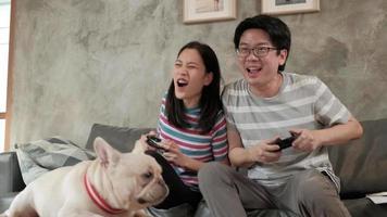 asiatisches Paar spielt Videospiele und streichelt seinen Hund video