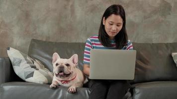 lässige freiberufliche asiatische frau, die von zu hause mit ihrem hund arbeitet video