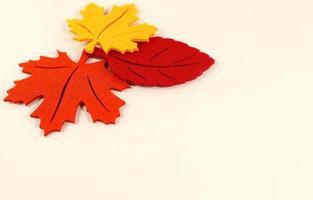 hojas de otoño rojo naranja amarillo, marco de borde, planta artificial foto