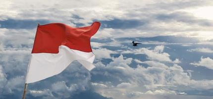 Indonesia National Flag on cloudy blue sky background with a seagull photo