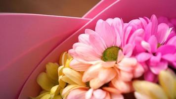 fondo colorido de la flor de la margarita de los crisantemos foto