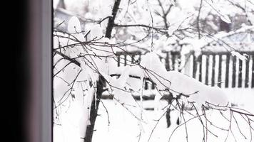 Winter landscape seen through the window photo