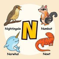 animales alfabeto letra n para narval tritón numbat ruiseñor pájaro vector