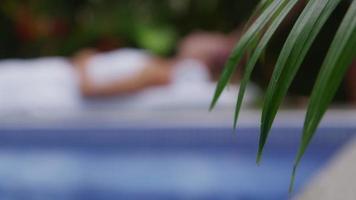 Tropical spa, rack focus, Costa Rica. video